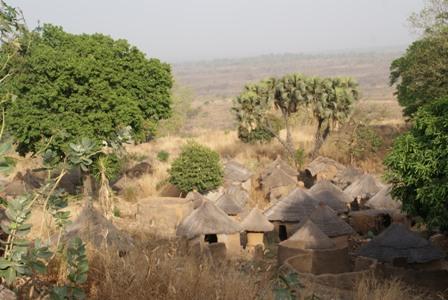 Promotion de l'écotourisme à la ferme apicole de Tobé