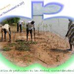 bonne_annee_2009-2.jpg