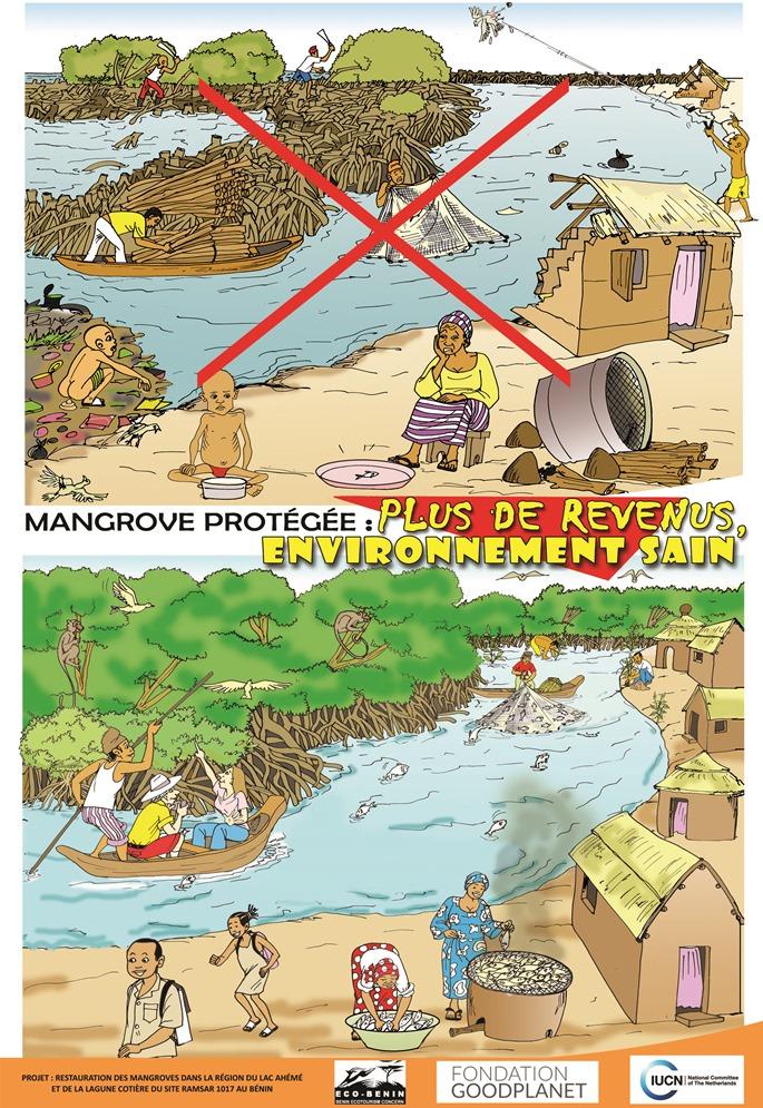 Plantation de mangrove le long du chenal Aho et de la lagune côtière