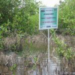 site_de_bilan_carbone_Benin.jpg