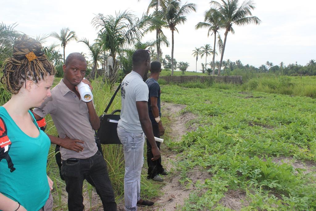Formation et appui à la promotion des pratiques agro-écologiques dans le maraîchage