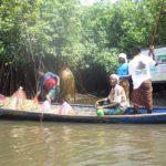 sacralisation_mangroves_bouche_du_roi_ecobenin.jpg