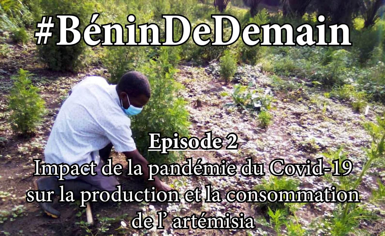 Restez chez vous et découvrez le #BéninDeDemain, Episode 2