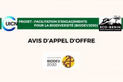 Recrutement d'une équipe de consultants pour l'Élaboration de stratégies et scenarii d'engagement des acteurs économiques pour la conservation de la biodiversité au Bénin dans le cadre du projet BIODEV-2030