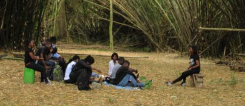 Programme Youth for Biodiversity : implication des jeunes dans la préservation de la biodiversité