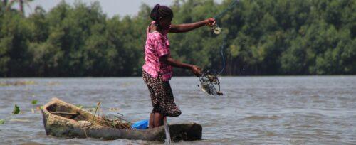 Résumé du projet Mangroves Economie