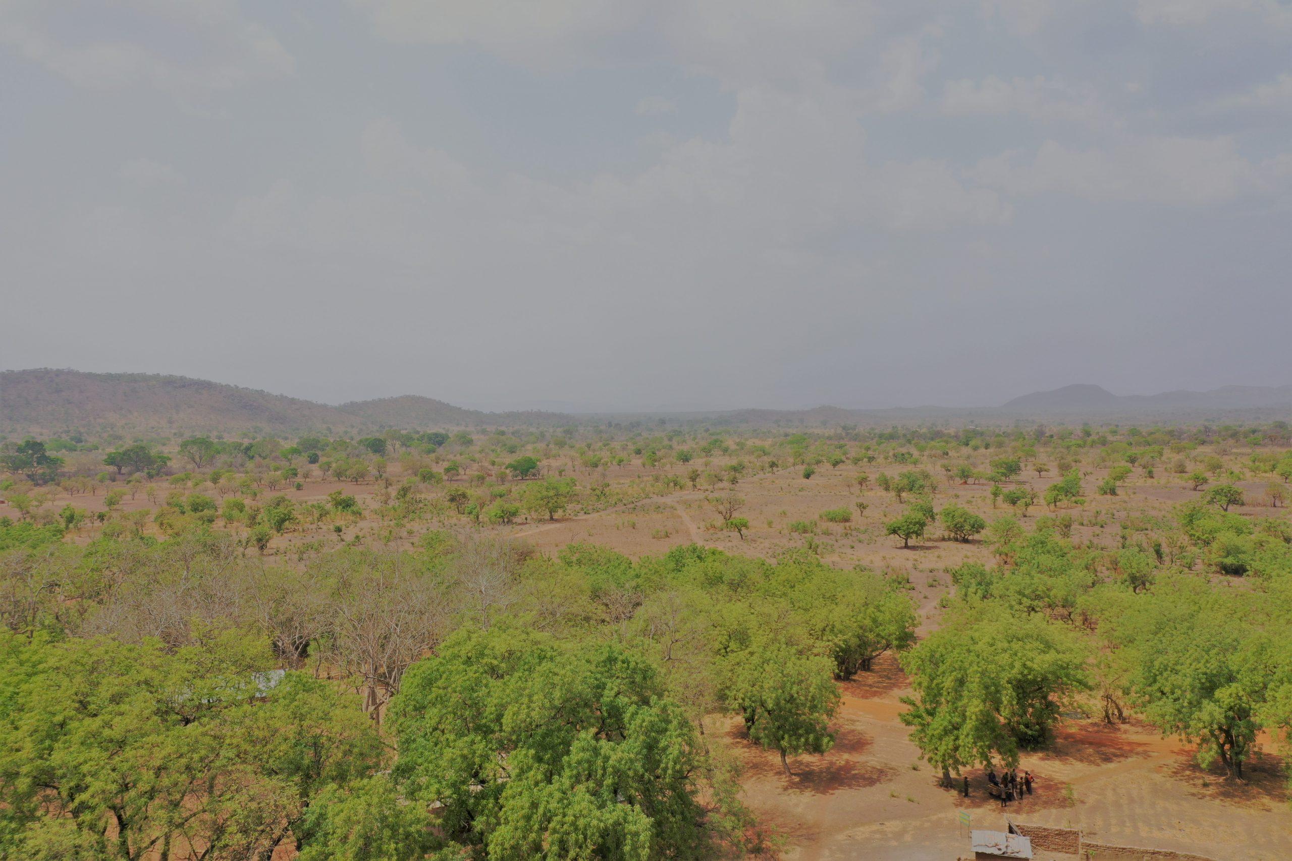 Tourisme: Le trésor caché du Parc National de la Pendjari
