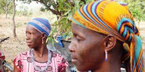 Paysages et visages du Bénin