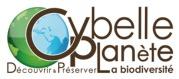 Logo Cybelle Planète