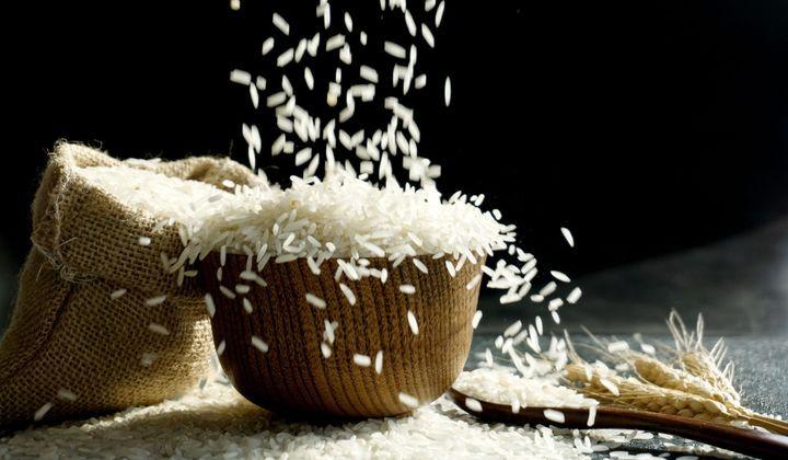 Sécurité alimentaire: Une riziculture intelligente pour un meilleur rendement